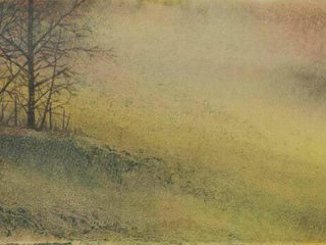 Dawn trees. 31/20cm