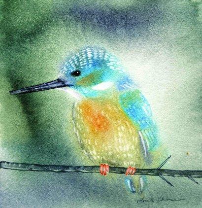 Kingfisher  30:30cm