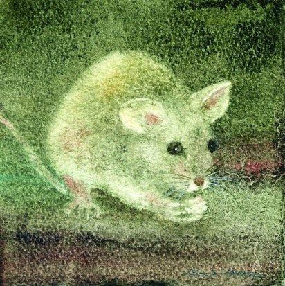 Mouse  30:30cm
