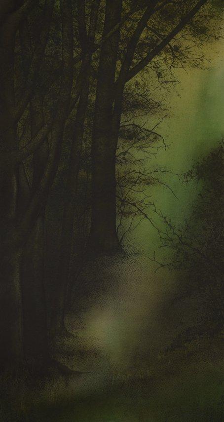 Woodland Walk. 50:78 cm