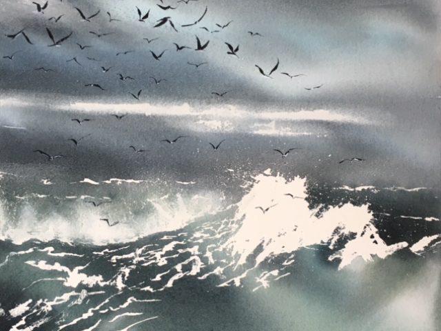 Seagulls 48/48cm
